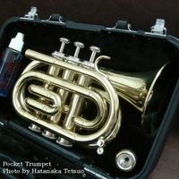 Pocket_trumpet_2